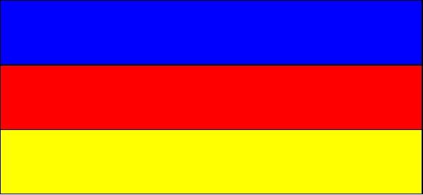 flaga TO.jpeg