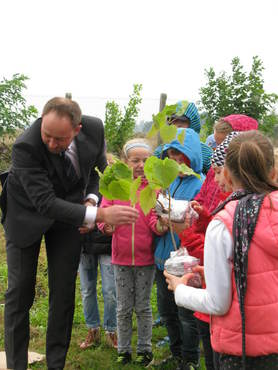 Galeria Akcja sadzenia drzewek tlenowych