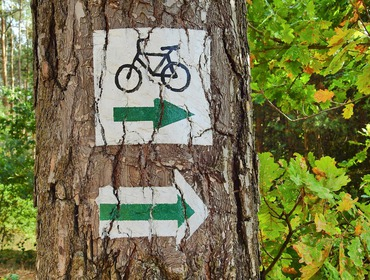 trasa rowerowa.jpeg